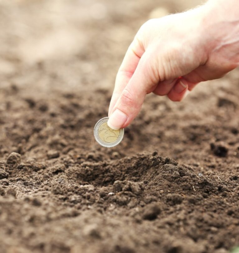 Tarımsal Krediye Ne Zaman İhtiyaç Duyulur ?