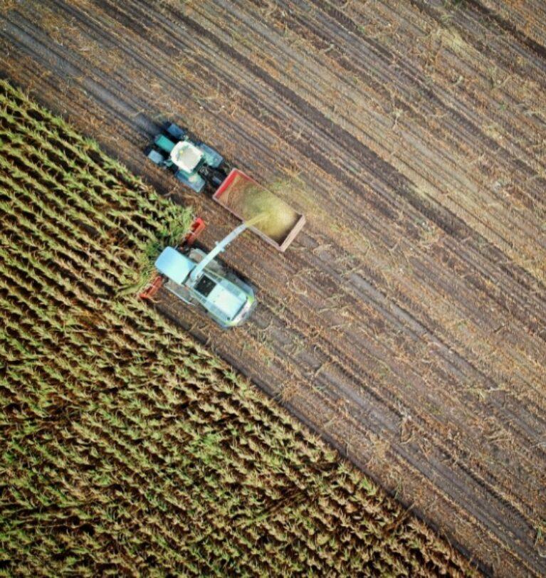 Tarımsal Destekler Ve Hibe Çeşitleri Nedir ? – Nasıl Başvurulur?