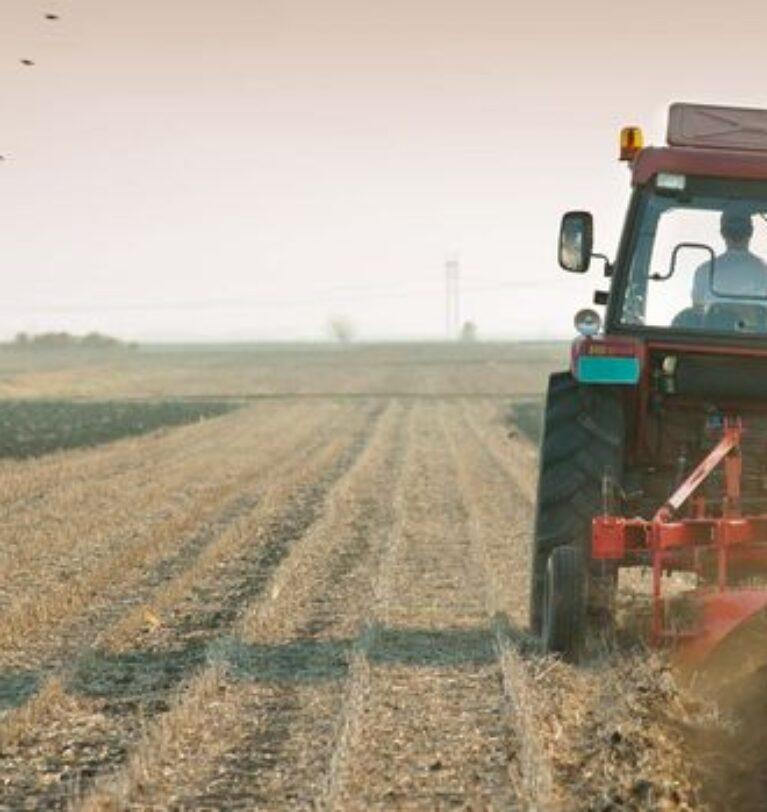 Tarım-ÜFE 20 ayın zirvesinde