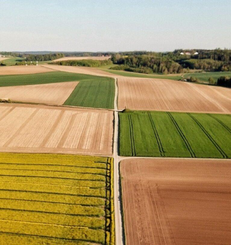 Arazi Büyüklüğü Ne Kadar Olmalıdır ?