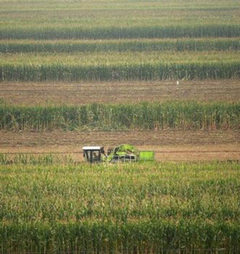 Tarım emtia fiyatları 8 yılın zirvesinde