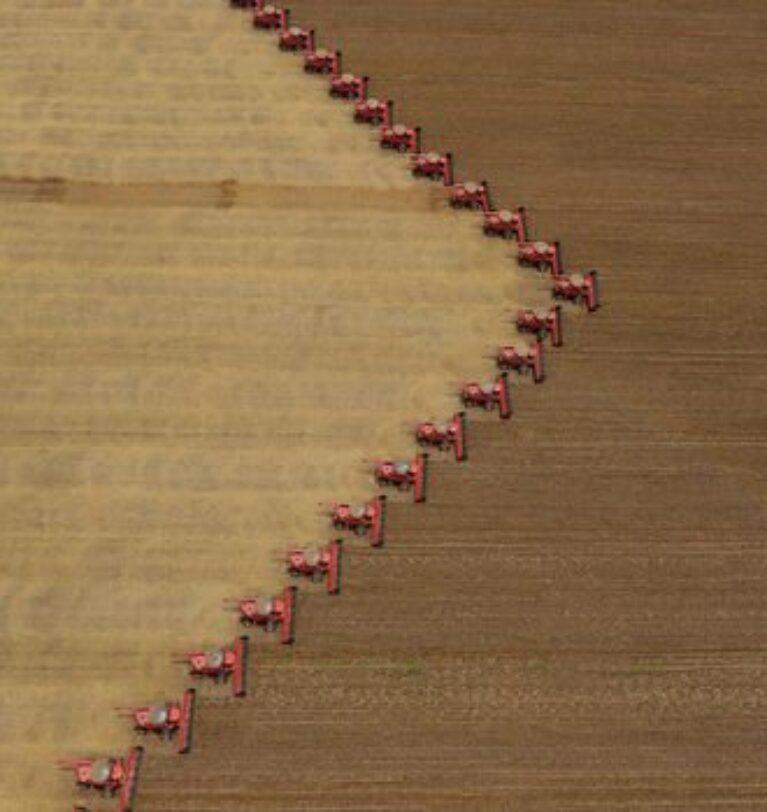 Brezilya soya ekim alanını artırıyor