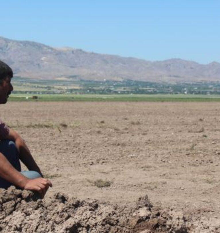 Sigortasız çiftçiye 'kuraklık desteği' Afet Fonundan yapılacak