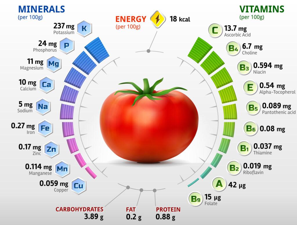 Domates besin değerleri