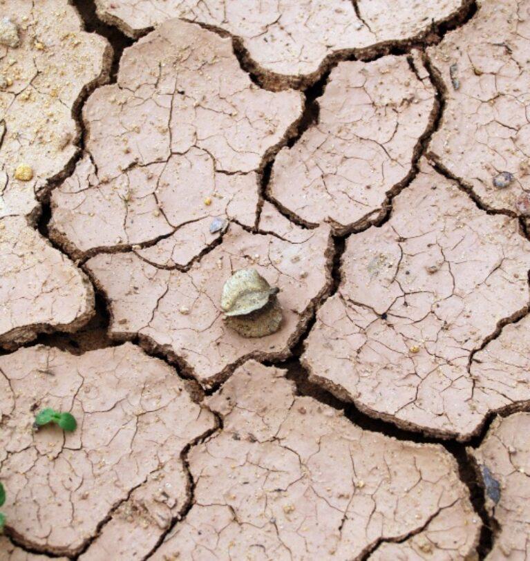 Kuraklık Nasıl Önlenir? Kuraklık Haritası 2021