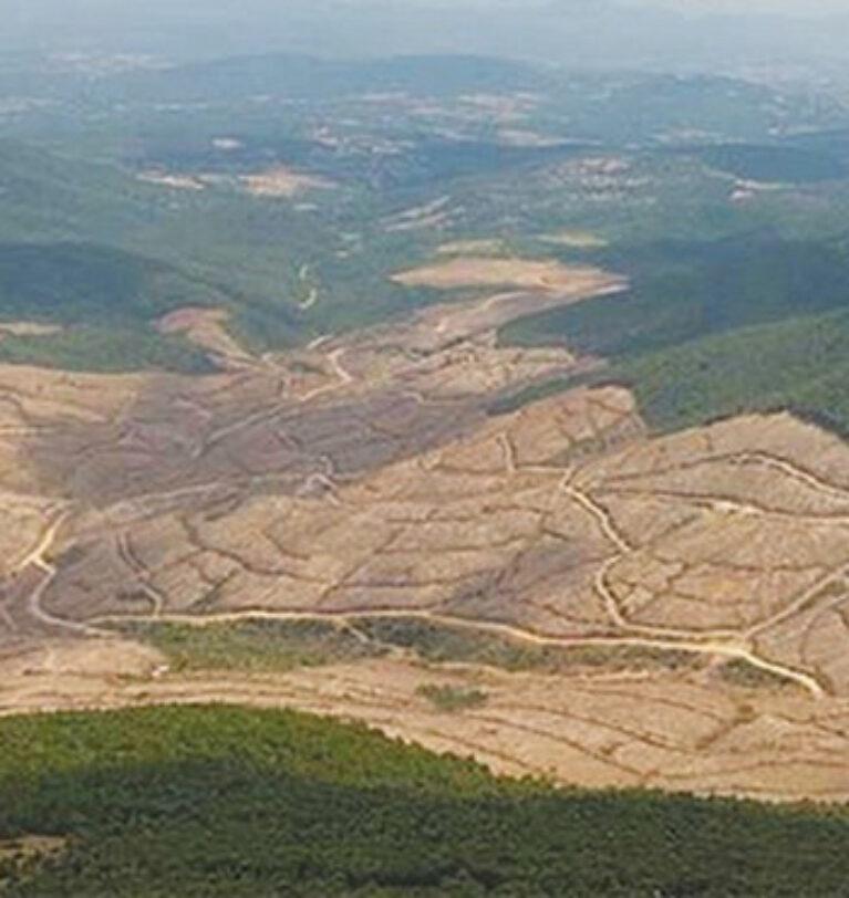 Tahribat nedeniyle yılda 24 milyar ton üst toprak tabakası kayboldu