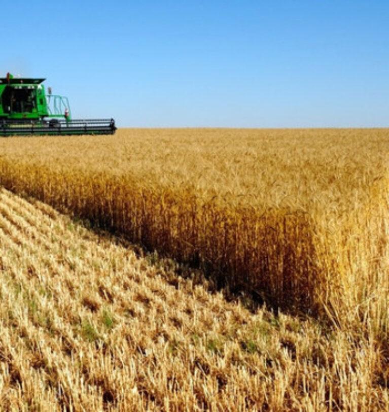 Tarımsal girdi fiyatları aylık yüzde 1,71 yükseldi