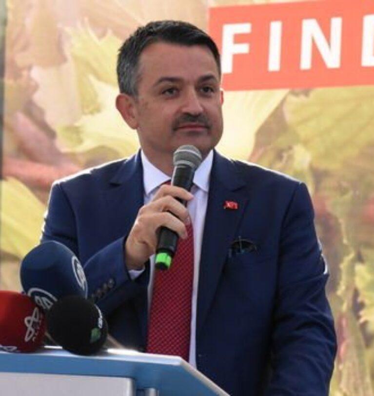Tarım Bakanı Pakdemirli'den fındık açıklaması