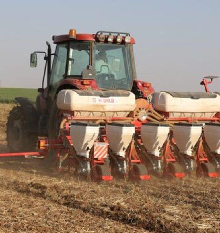 Kuraklık, Mardin Ovası'ndaki çiftçileri soya fasulyesine yöneltti